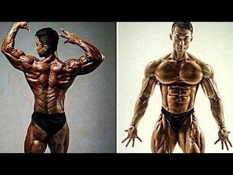 Samurai Muscles 筋 Aesthetic Fitness Amp Bodybuilding
